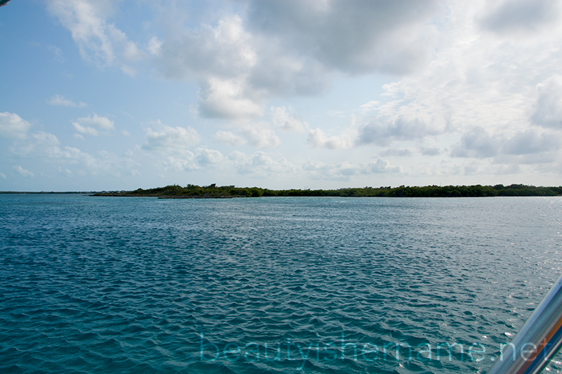 Mangrove Cay, Turks and Caicos